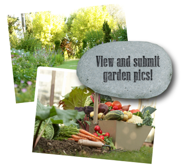 View and submit garden pics!