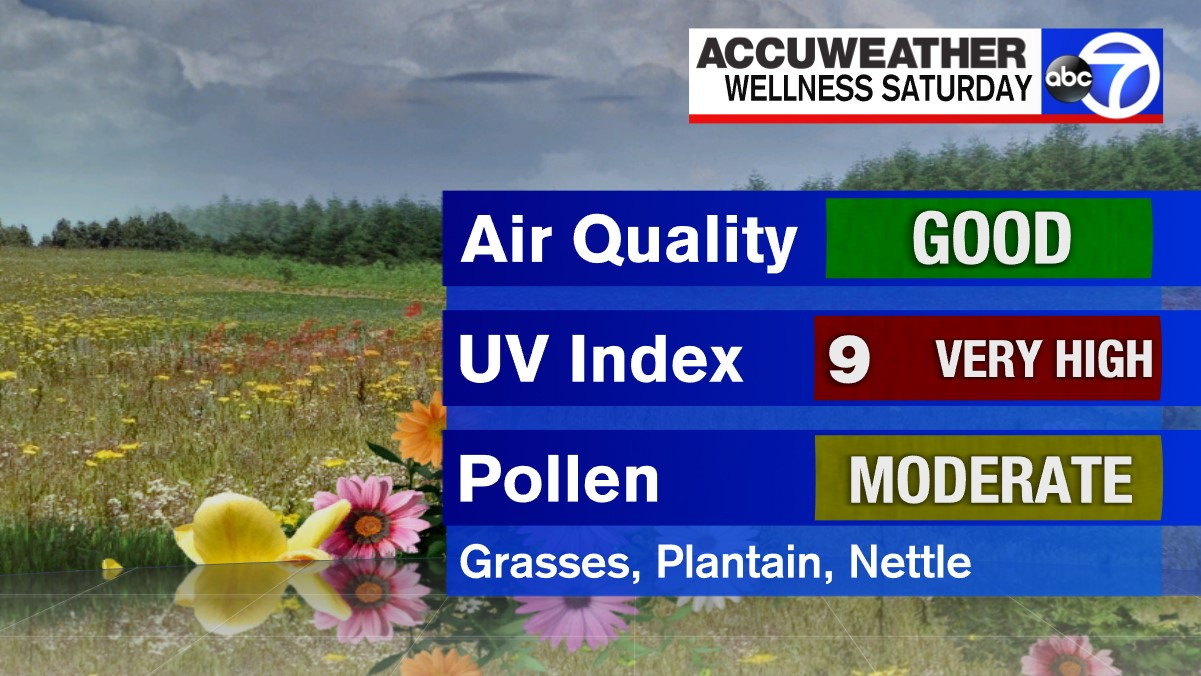 Air Quality Uv Index Pollen Forecast